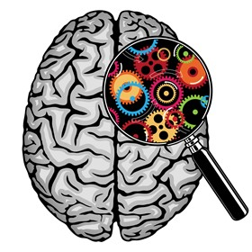 7 ways to build your students' ' brains