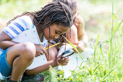 La NASA quiere que los estudiantes ayuden a predecir brotes de enfermedades en el mundo real